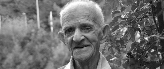 Donato Pollice, storia di vita tra l'Italia e la Germania